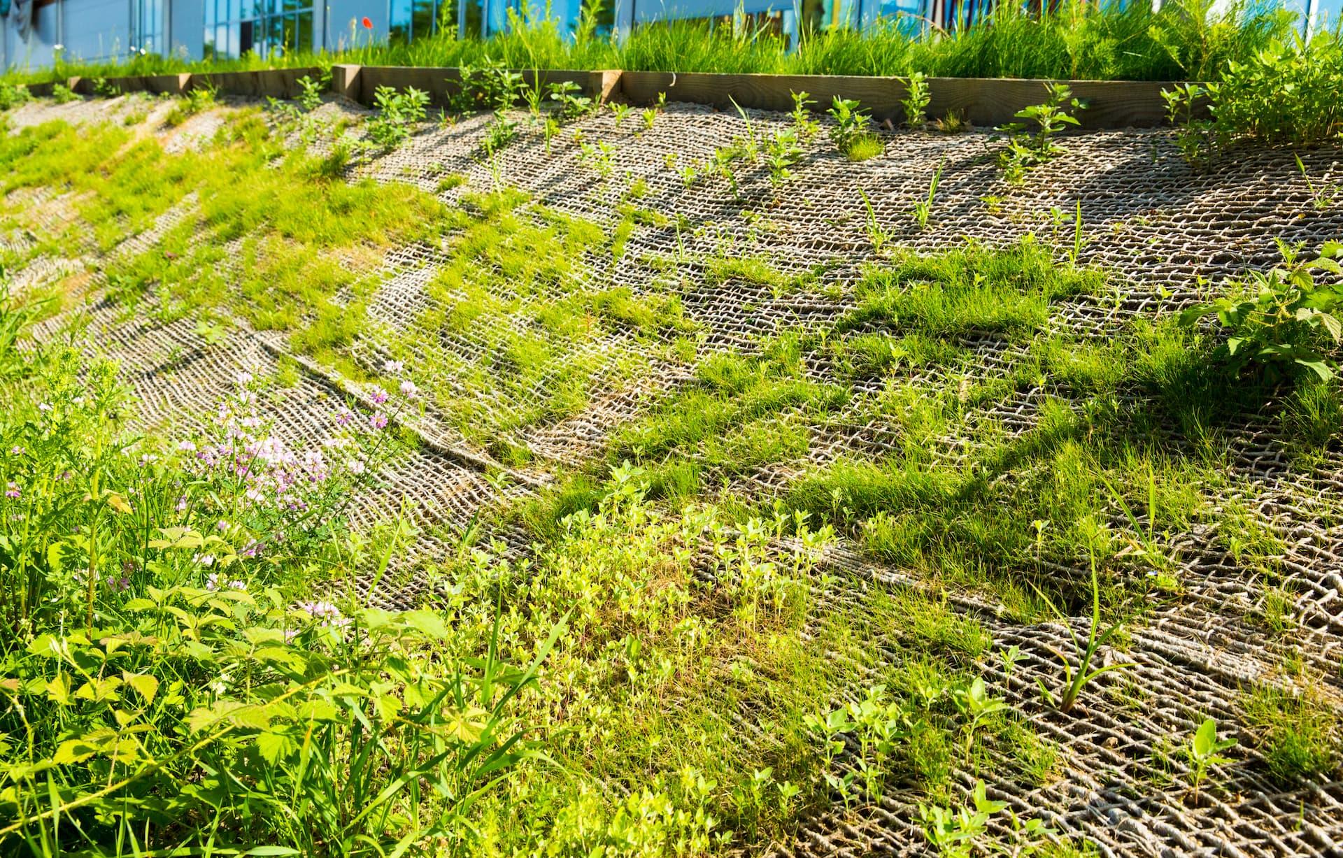 Garten Böschungssicherung
