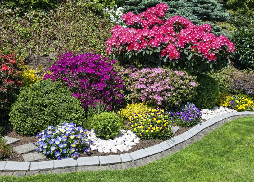 Garten Blumen-Bepflanzung